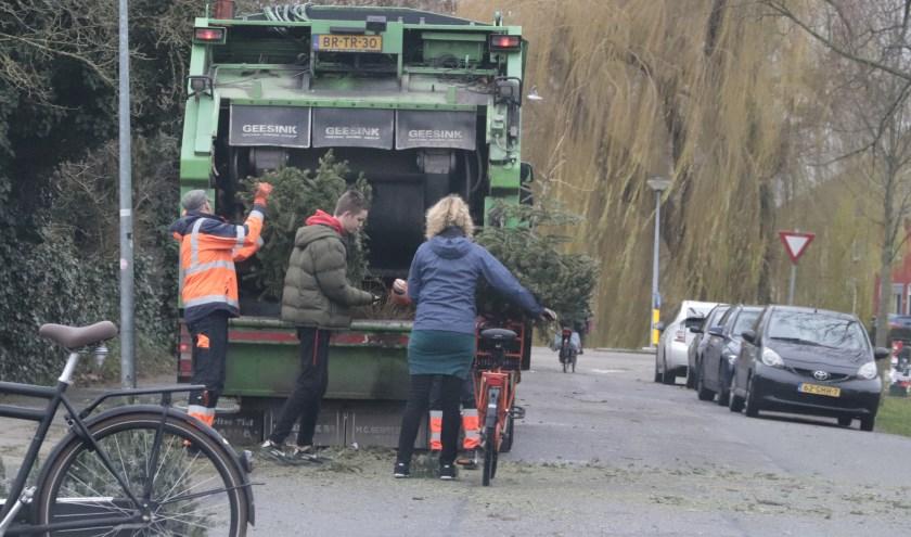Er werden wer veel kerstbomen ingeleverd bij de AVRI-wagen