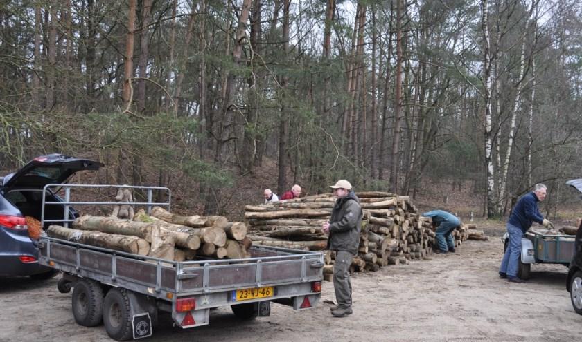 De stammen, vooral berken, liggen in kant en klare stukken van ongeveer 2 meter langs de weg.