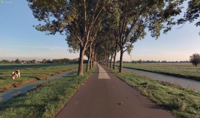 De Vlietweg in Bleskensgraaf, waar 36 bomen worden vervangen. (Foto: Privé)