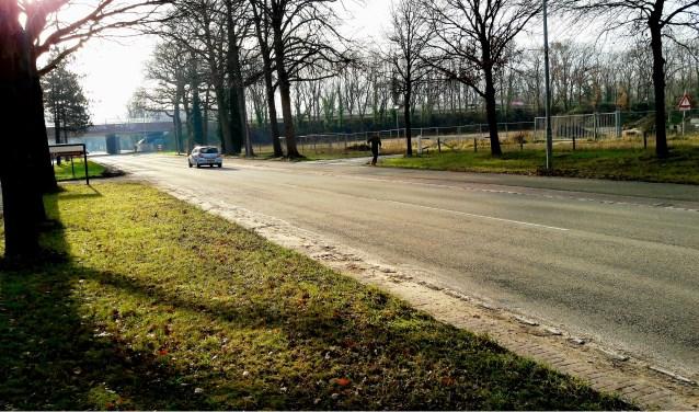 Nu nog Edeseweg, straks Parklaan, die hier rechtsaf gaat, voor het viaduct, verderop onder de A12 door naar de Dreeslaan.