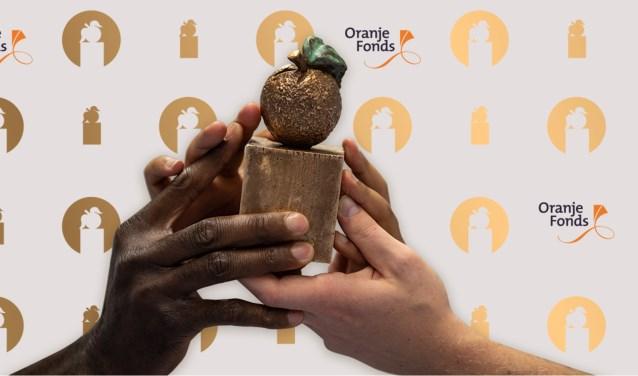 Het thema van de Appeltjes van Oranje is dit jaar De kracht van samen; Vrijwilligers doen mee(r)!. Stemmen kan tot volgende week.