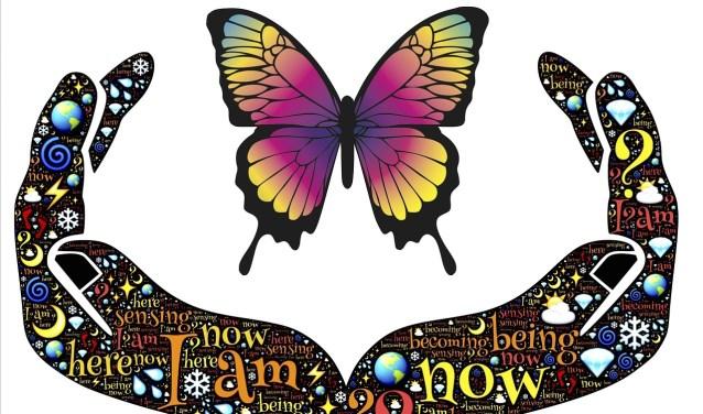 handen en vlinder
