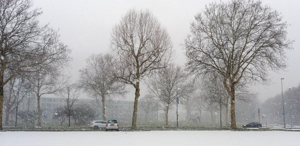 Parkeerplaats langs de Aveling. Foto: Toni Smits Toni Smits © Persgroep
