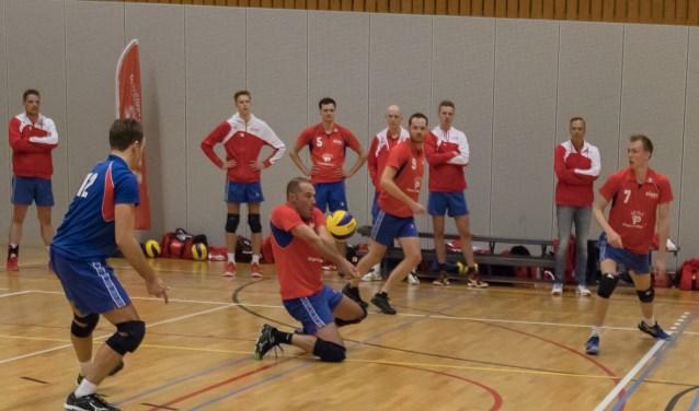 Volleyballers Vives zetten stijgende lijn door - Zuid Zenderstreek
