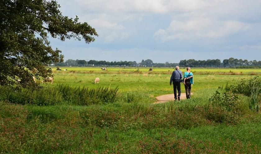 Struinend door de polder op zoek naar de blauwborst, de grote zilverreiger, de buizerd, de kievit en de zwarte stern. (Foto: Maurice Kruk)