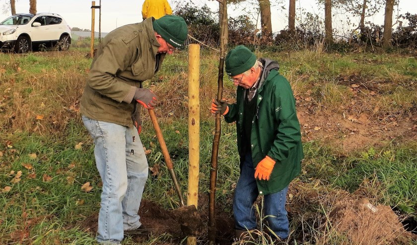 Vrijwilligers planten een boom. Steek ook je handen uit de mouwen voor de natuur in Rucphen!