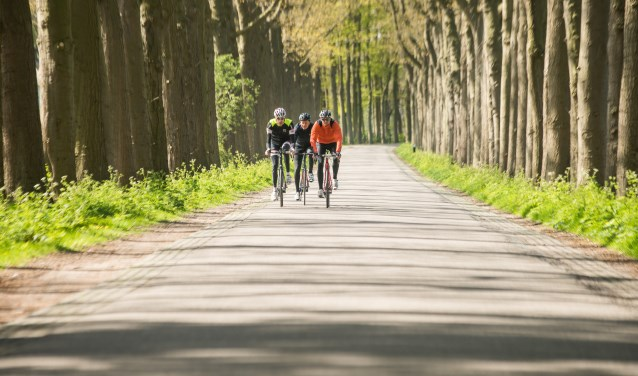 De tweede etappe (182.9 km, 19 gemeenten) loopt van 's-Hertogenbosch naar Utrecht via Utrechtse Heuvelrug, Leusden, Amerongen, Soest, Zeist en De Bilt. FOTO: RBT Heuvelrug