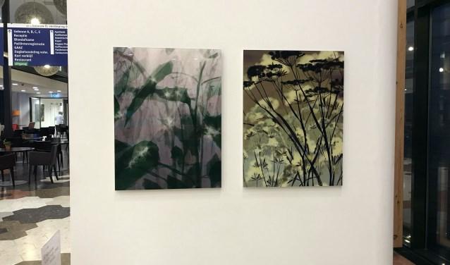 Schilderijen van de Rosmalense kunstenaar Anneke Wasser, die de hectiek van een ziekenhuis tot een rustpunt dwingt.