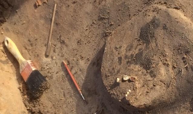 Met militaire precisie is afgelopen week door archeologen gewerkt om de skeletten van de gesneuvelde soldaten uit de grond te halen. Nader onderzoek moet meer geheimen prijsgeven. Foto: Harald Beerens