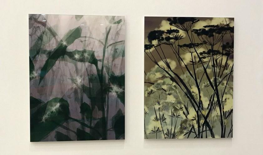 In de expositieruimte boulevard van het Jeroen Bosch Ziekenhuis is de expositie van werken van Marco Douma en Anneke Wasser te zien.