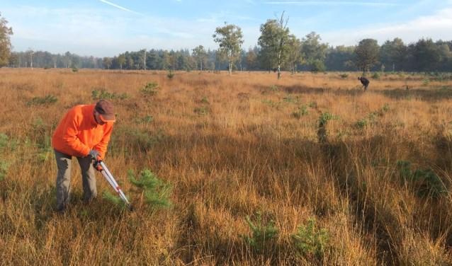 Vrijwilligers werken op de heide, in het bos of op akkerranden.