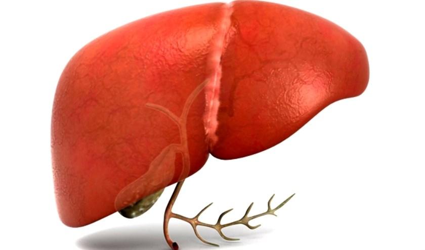 lever transplantatie donatie
