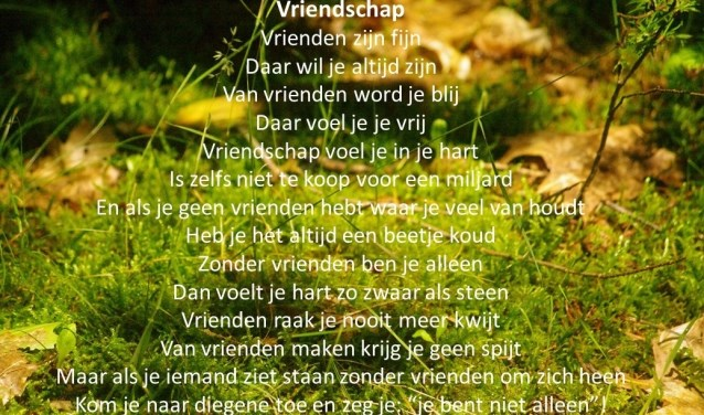 Het gedicht over vriendschap waarmee Amber Hegeman de gedichtenwedstrijd voor scholen won.