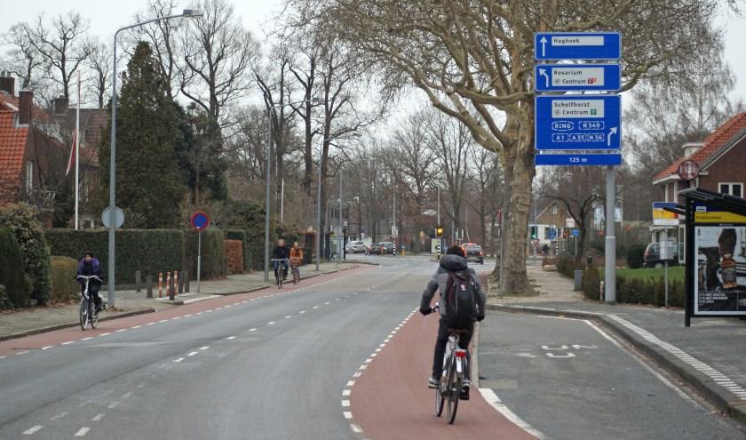 De Vriezenveenseweg wil graag de Groenste straat van Overijssel worden