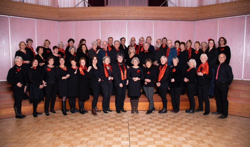 Zingis, een koor dat het liefst met gevoel zingt.