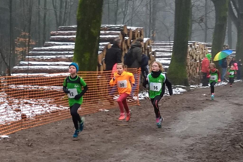 Climax-atleten naar podiumplaatsen in Rhenen. Foto: Climax © Persgroep
