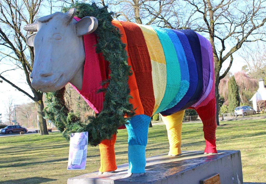 De os in Sterksel heeft een warme trui aangemeten gekregen.  © Persgroep