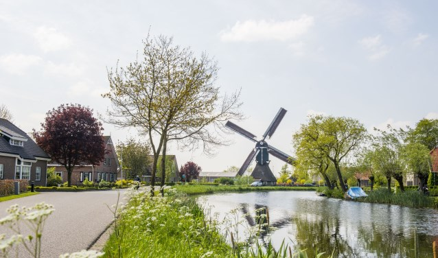 Hofwegense molen te Bleskensgraaf. (foto: Cees van der Wal)