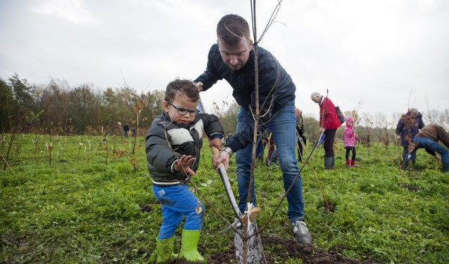 Op zaterdag 23 maart organiseert Natuurmonumenten een boomplantdag aan de Zwaaksedijk te Kwadendamme. FOTO: Marten van Dijl