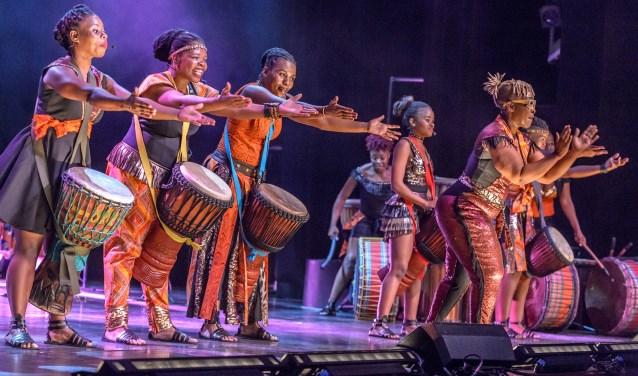 De tien muzikanten en zangeressen van de Afrikaanse vrouwengroep Abafazi nemen je mee op safari. (foto: Wim Lanser)