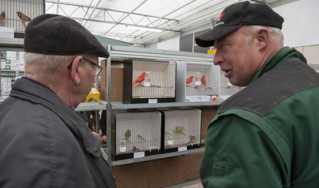 De vogelmarkt van De Martel uit Huissen trekt elk jaar veel liefhebbers. (foto: Ellen Koelewijn)