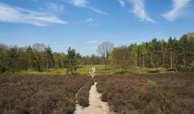 In de provincie Utrecht bevinden zich meerdere parken en natuurgebieden.