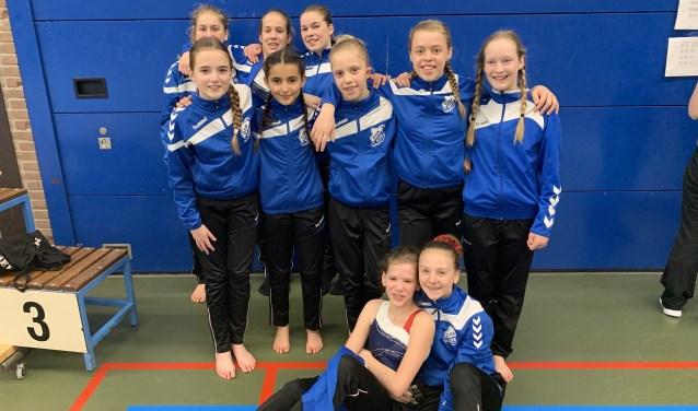 De christelijke gymnastiekvereniging DOK uit Ede nam daar met een grote groep turnsters aan deel. (Foto: DOK)