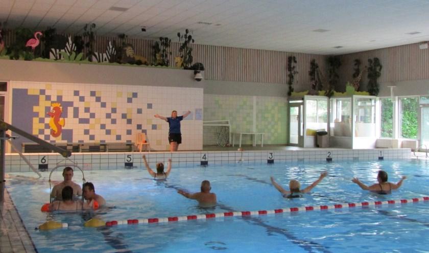 De vrijwilligers van het Klupzwemmen in Wierden zijn op zoek naar nieuwe collega's. Foto: Stichting de Klup Twente.