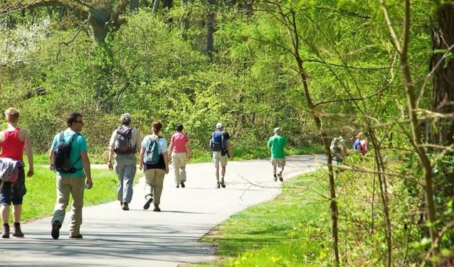 Sportief genieten tijdens het wandelen voor een goed doel, dat is de bedoeling op zondag 14 april als er een voorjaarswandeltocht wordt gehouden door de gemeente Montferland. (foto: VVV Montferland)