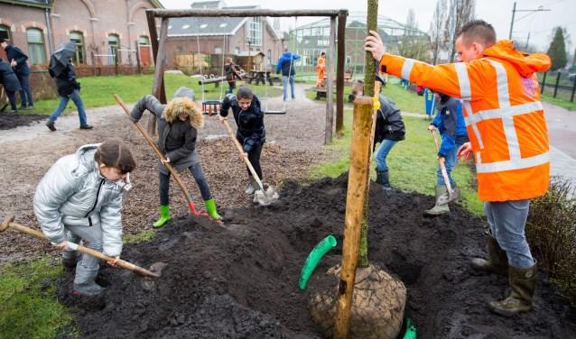 Leerlingen van basisschool De Vuurvogel planten bomen aan de Diamantstraat tijdens de Nationale Boomfeestdag (foto: Jacqueline Imminkhuizen