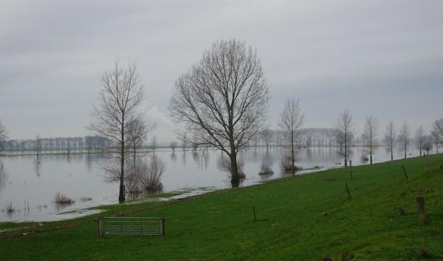 Hoogwater in de Maas.