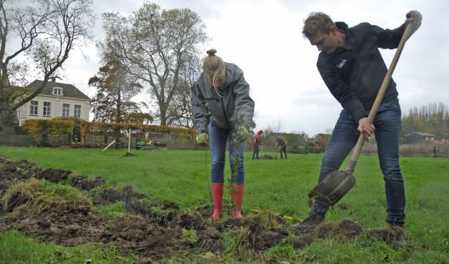 Bewoners van het buitengebied van Hattem kunnenhun erven en kavelgrenzen door het project voorzien van streekeigen bomen en struiken.
