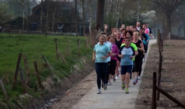 Hardlopers onderweg. Beginners kunnen in De Lutte aan een clinic meedoen.