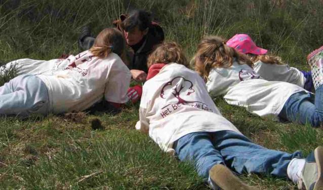 Heb jij ervaring in het begeleiden van kinderen en wil je jouw liefde voor de natuur met ze delen?