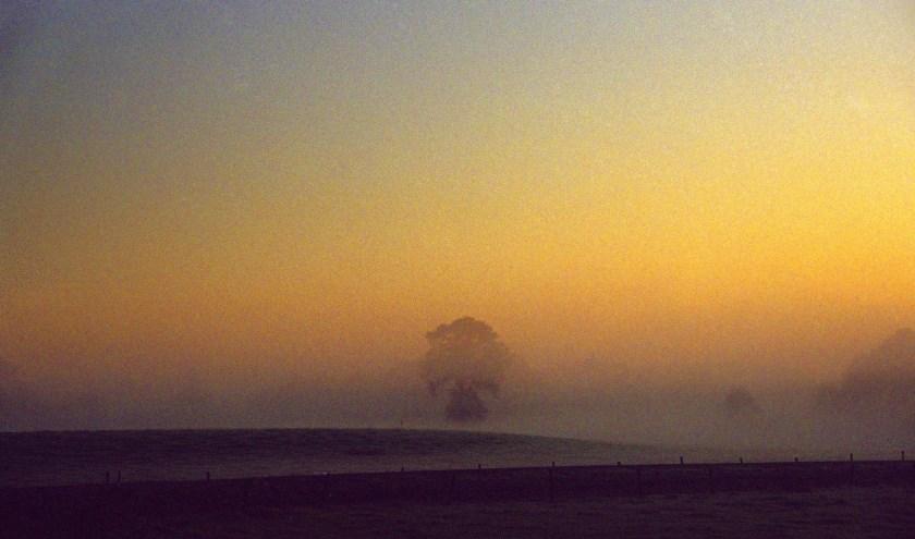 Wandelend door het Aamsveen heeft Eddy Oude Voshaar een prachtig uitzicht.