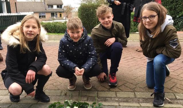 Rick, Noa, Stijn en Rachel, vier leerlingen van School met de Bijbel de Regenboog uit het dorp, legden witte rozen bij de steentjes. Eigen foto