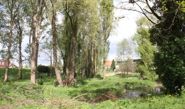 Het weinige groen in Boven-Hardinxveld komt nog meer onder druk te staan. (Foto: pr)