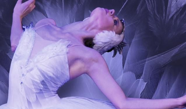 Scène uit het Zwanenmeer van The Royal Moscow Ballet. Kinderen van Gelderse balletscholen gaan meedansen. (Foto: Shane Browne)