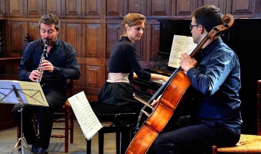 Het Arcadië maakten in 2011 hun debuut in de kleine zaal van Muziekcentrum Vredenburg te Utrecht.
