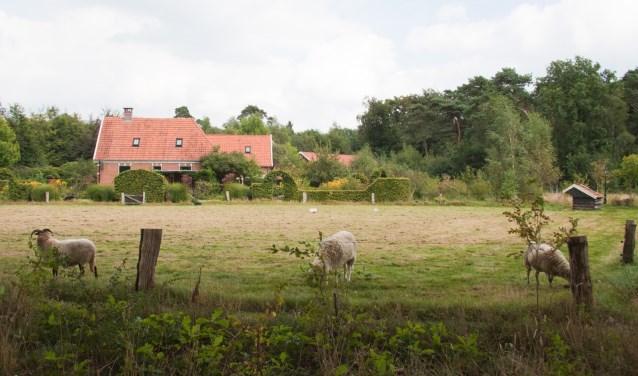 Landgoed Gossink