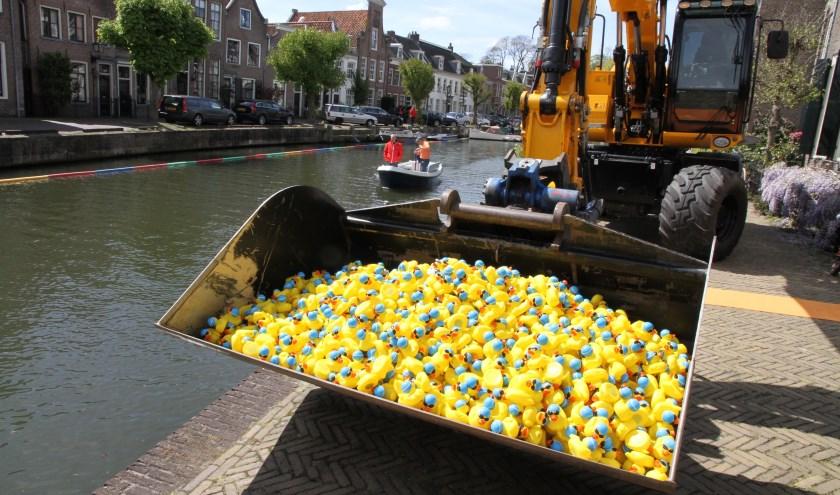 Lions Club Maarssen houdt op Koningsdag, zaterdag 27 april, de badeendrace in Maarssen voor het goede doel: SailWise. Foto: Gerth Molenaar