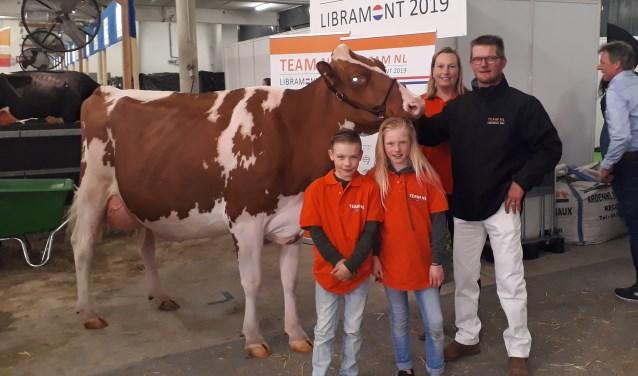 Paris 6 uit Beers is negende geworden bij de Europese koeienkeuring in het Luxemburgse Libramont.  (foto: persfoto)
