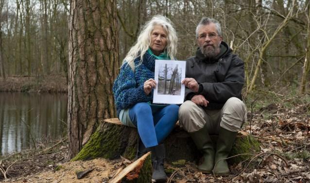 Reinnetta Beking en Jalf Flach op de stam van een gekapte Amerikaanse eik in het Loohuisbos. Die vormde - is te zien op de foto in hun handen - een opvallend stel met een grove den. (foto: Vanessa Wassink)