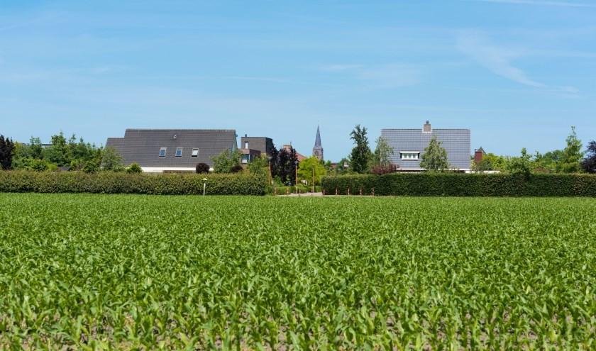 Nu is het er nog groen, maar binnenkort wordt de wijk Piekenhoef uitgebreid met bouwkavels waar men zelf een huis kan bouwen.