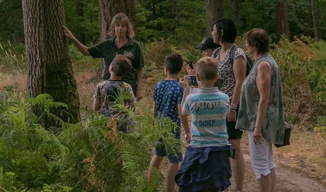 De boswachter kan de kinderen tijdens de wandeling veel leuke dingen over het bos vertellen. (Foto: Irma Huisman)