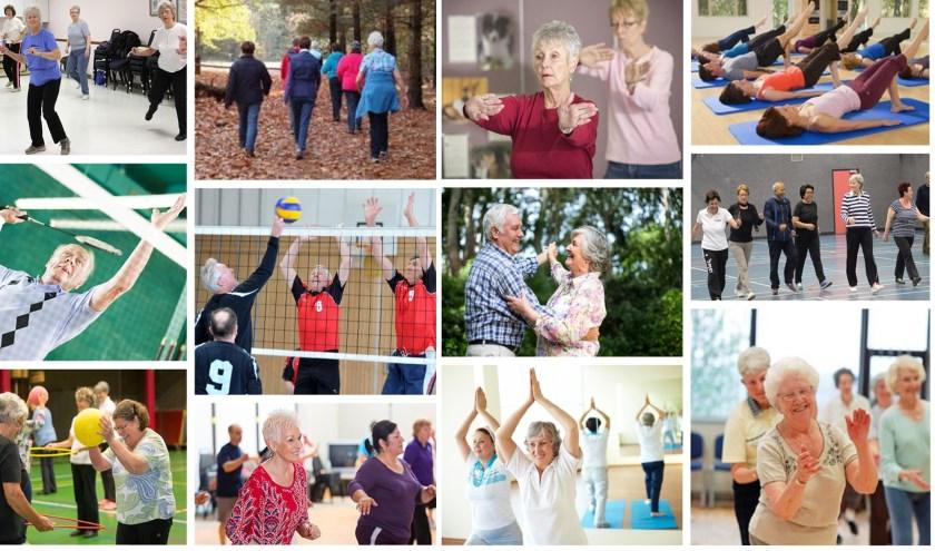 Deze collage geeft een beeld van de activiteiten die Bewegingscentrum 50plus aanbiedt. Als er voldoende animo is, komt daar binnenkort jeu de boules, tafeltennis en fitness bij.