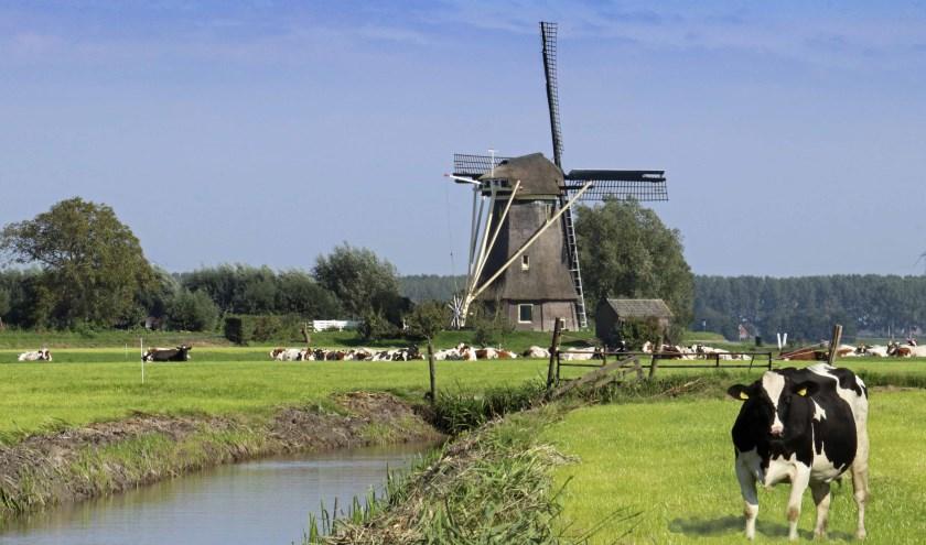Het Vechtstreekmuseum houdt vanaf 8 april een serie lezingen over de wereld van molens. Foto: Vechtstreekmuseum