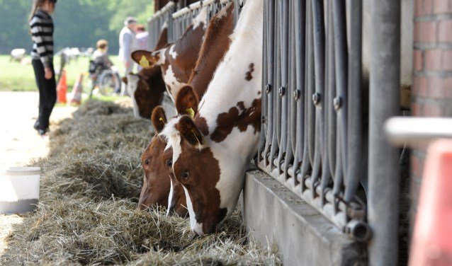 Boert bewust is een nieuw initiatief in het Land van Cuijk. (eigen foto)