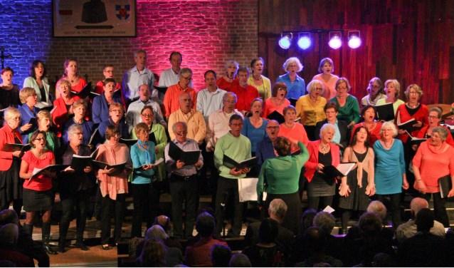 Koor De Poldermodellen geeft een voorjaarsconcert op 13 april. Foto: Maarten Vervoorn
