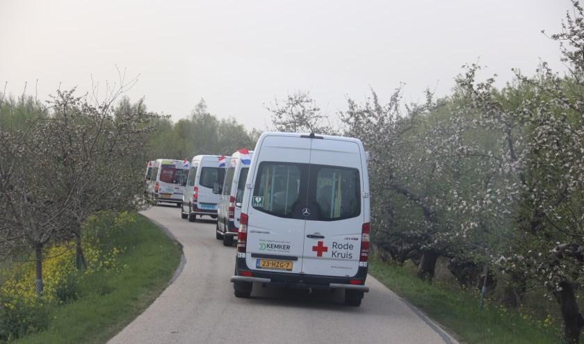 De Busjes met Culemborgse senioren rijden over Nederlands mooiste punt de Appeldijk bij Tricht. (Foto: Theo van Dam)
